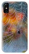Autumn Web IPhone Case