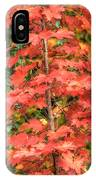 Autumnal Acer IPhone Case
