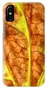 Autumnal Equinox IPhone Case