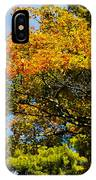 Autumnal Fruition IPhone Case