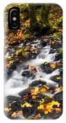 Autumn's Staircase IPhone Case