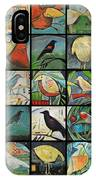 Aviary Poster IPhone Case