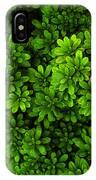 Azalea On Boxwoods IPhone Case