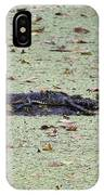Baby Gator In The Swamp IPhone Case