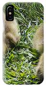 Baby Geese IPhone Case