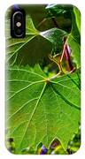 Backlit Leaves IPhone Case