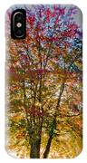 Backlit Maple In Autumn's Light IPhone Case