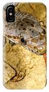 Bairds Rat Snake Tongue Flick IPhone Case