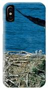 Bald Eagle And Chicks IPhone Case