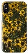 Balsamroot Field In Grand Teton IPhone Case