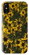 Balsamroot Field In Grand Teton IPhone Case