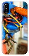 Banding An American Lobster In Chatham On Cape Cod IPhone Case
