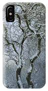 Bare, Snow-covered Tree In Winter IPhone Case