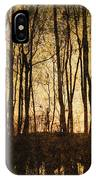 Fall Trees On A Lake IPhone Case