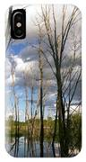 Bare Trees And Sky IPhone Case