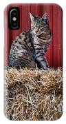 Barnyard Cat IPhone Case