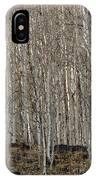 Barren Aspen IPhone Case