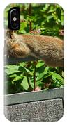 Basking Squirrel IPhone Case