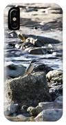 Beach Dweller IPhone Case