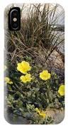 Beach Evening Primrose On Folly Beach - D001782 IPhone Case