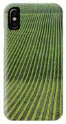 Bean Field, Holland, Manitoba IPhone Case