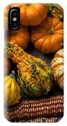 Beautiful Autumn IPhone Case