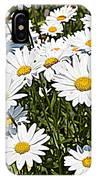 Beautiful Daisies IPhone Case