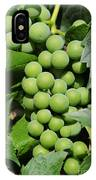 Beautiful Grapes IPhone Case