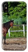 Beauty Of A Horse IPhone Case