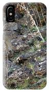 Bedded Pair IPhone Case