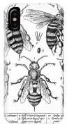 Bee Anatomy Historical Illustration IPhone Case