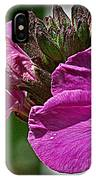Bee On A Flower IPhone Case
