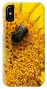 Bee On Sunflower IPhone Case