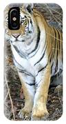Bengal Tiger In Pench National Park IPhone Case