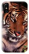 Bengal Tiger In Thought IPhone Case