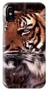 Bengal Tiger Watching Prey IPhone Case