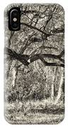 Bent Trees Sepia Toned IPhone Case