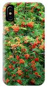Berries In Profusion IPhone Case