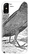 Bewick: Raven IPhone Case