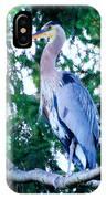 Big Bird - Great Blue Heron IPhone Case