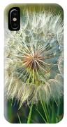 Big Dandelion Seed IPhone Case