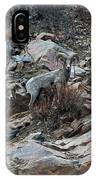 Big Horn Sheep3 IPhone Case