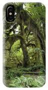 Bigleaf Maple Acer Macrophyllum IPhone Case