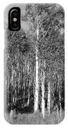 Birch Place IPhone Case
