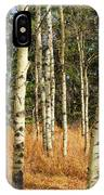 Birch Tree Abstract IPhone Case