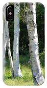 Birches On A Meadow IPhone Case