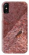 Bird And Sand IPhone Case