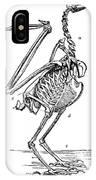 Bird Skeleton IPhone Case