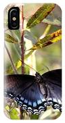 Black Beauty In The Bush IPhone Case