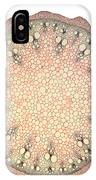 Black Bryony Stem IPhone Case